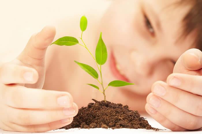 planting seeds (700x466, 30Kb)