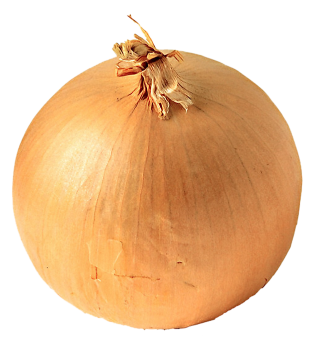 white onion copy (629x700, 510Kb)