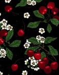 Превью fruit-c6426-black (500x643, 158Kb)