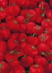 Превью food-c7520-red (493x700, 381Kb)
