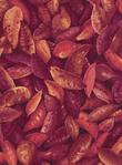 Превью food-c8626-sweet (500x679, 368Kb)