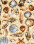 Превью reef-c5124-sand (500x643, 235Kb)