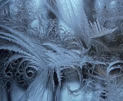А морозы всё крепчают...