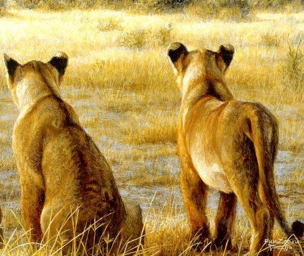 1232045485_safari014 (600x505, 110Kb)