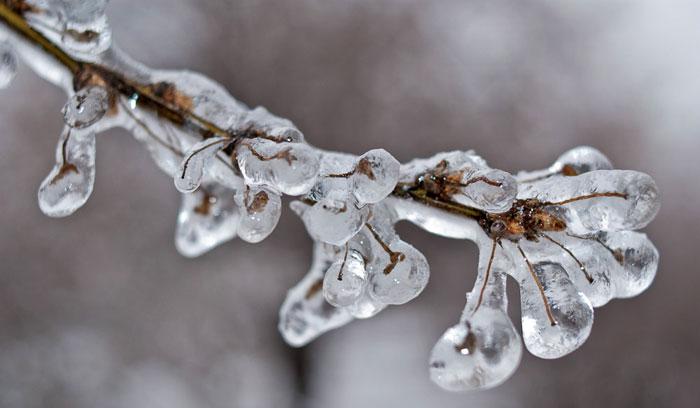 ледяные капли/4348076_ledyanoi_dojd_5 (700x408, 43Kb)
