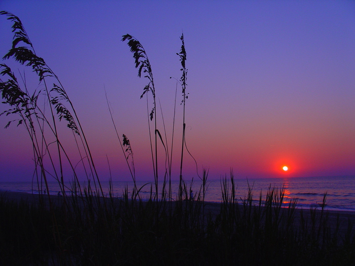 Myrtle_Beach_Sunrise1 (700x525, 190Kb)