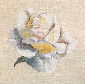 xc1041 white rose (354x350, 32Kb)