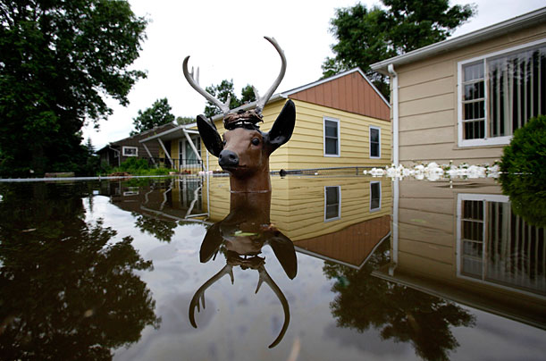 nd_flood_0625_03 (611x404, 72Kb)