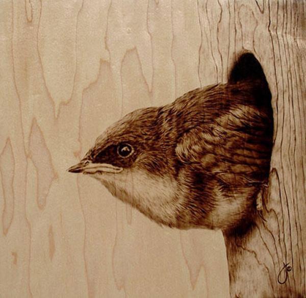 Выжигание по дереву (пирография) Джули Бендер.  Может, и из вас кто-то когда-то выжигал?