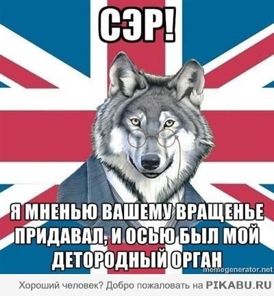 http://img1.liveinternet.ru/images/attach/c/3/83/435/83435617_syer.jpg
