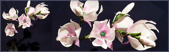 magnolie (559x172, 62Kb)