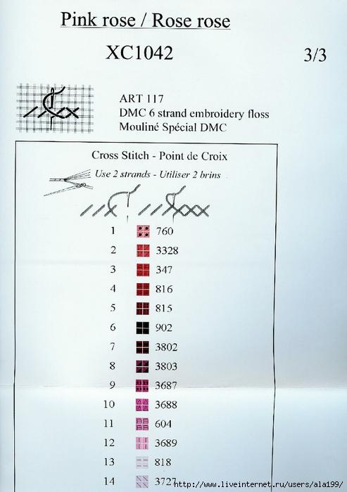 DMC-PinkRose6 (493x700, 204Kb)