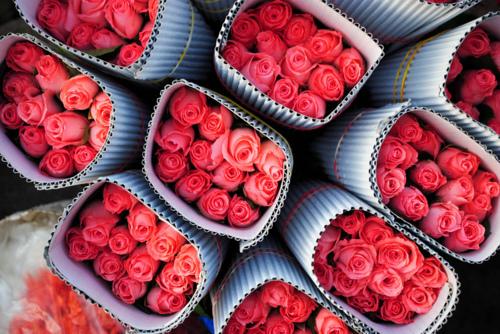 цветыarge (500x334, 181Kb)