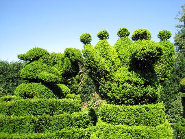 Ladew Topiary Gardens 12708
