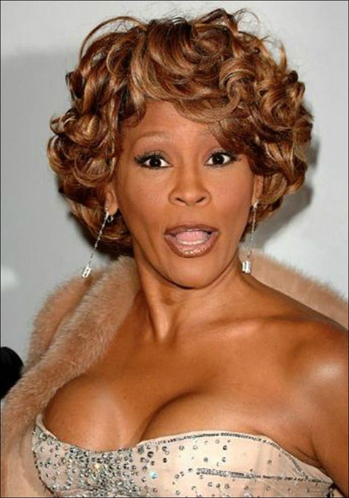 Whitney Houston 08 (490x700, 309Kb)