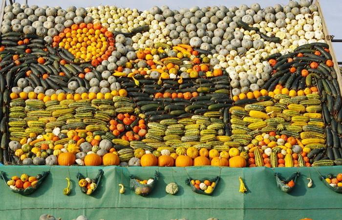 slindon-pumpkin-festival-6 (700x450, 207Kb)