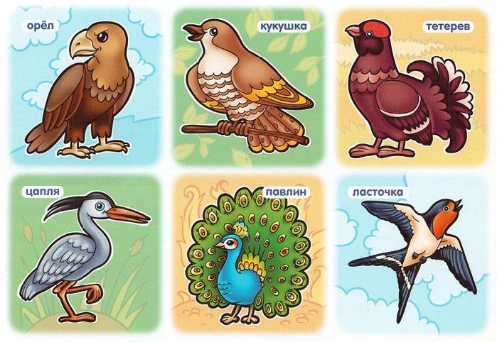 птицы-2 (700x482, 158Kb)