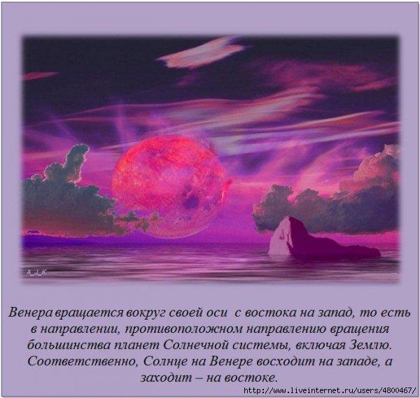 �����/4800467_1330629987_fakti_07_1 (600x569, 144Kb)