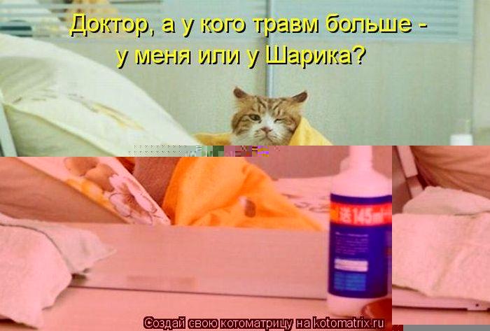 kotomatrix_05 (700x473, 47Kb)
