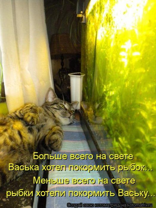 kotomatrix_07 (525x700, 67Kb)
