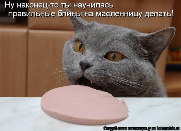 kotomatrix_31 (700x506, 49Kb)