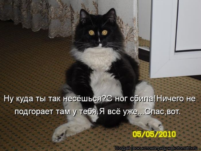 kotomatrix_33 (700x525, 62Kb)