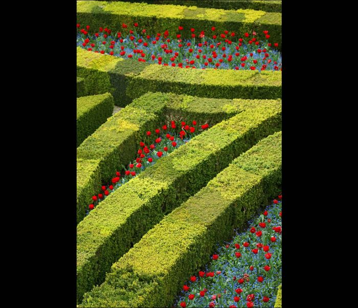 most_romantic_gardens_37 (700x601, 89Kb)