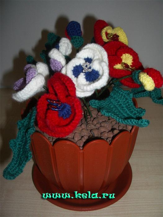 Записи с меткой цветы в горшках