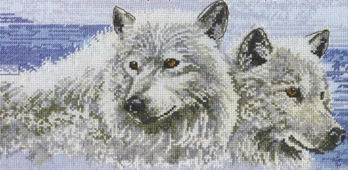 Набор для вышивания Волки, DMC BK191 купить в санкт петербурге Шале, Aida 16, Счетный крест.