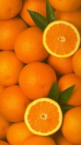 naranjas_concentrado (268x478, 18Kb)