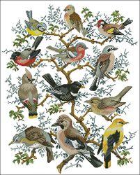 Схемы.  Дерево птиц.  Птицы и бабочки.