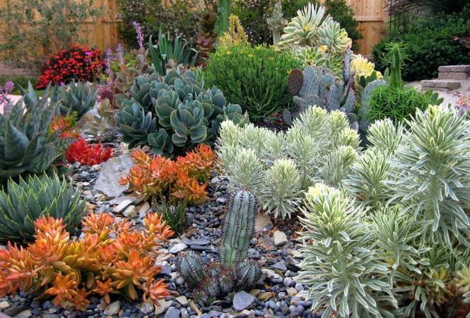 4497432_gardeninspirationbygabrielsucculent2 (665x450, 160Kb)
