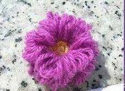 flor (183x133, 18Kb)