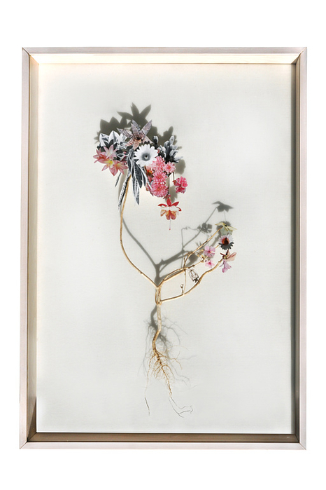 bloem-002-a (466x700, 206Kb)
