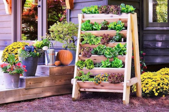 q-what-vegetables-would-grow-well-in-a-vertical-garden-container-gardening-gardening-outdoor-living (594x395, 353Kb)