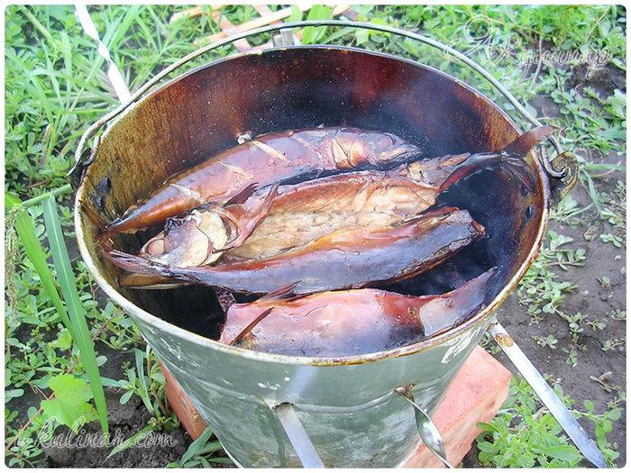 Рыба горячего копчения буквально за полчаса/5177462_fish_hot_kopchenie3 (700x525, 162Kb)