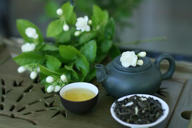 Jasmine-flower-tea (638x426, 28Kb)