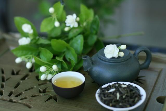 Jasmine-flower-tea (638x426, 28Kb)