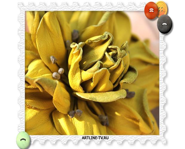 сайт желтый цветок1-2 (619x500, 327Kb)