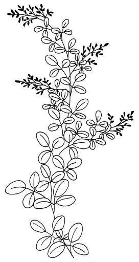 для росписи-3 (272x512, 70Kb)