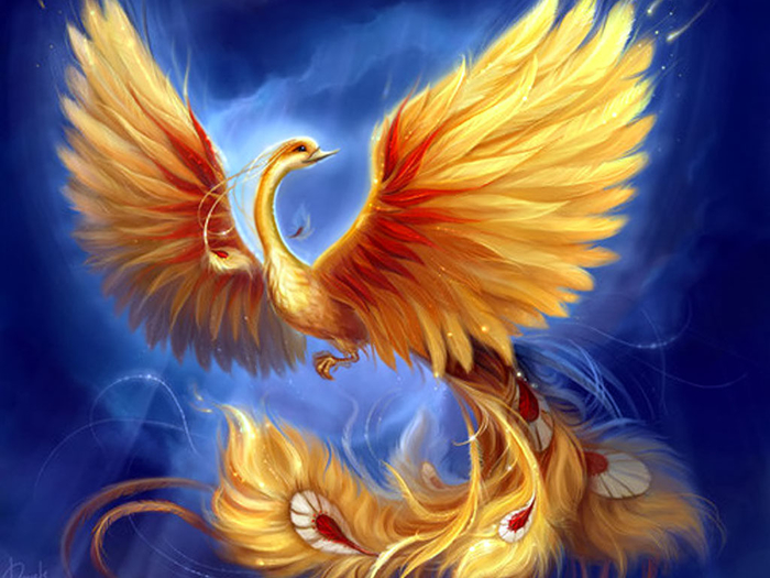 phoenix-creative-drawing (700x525, 384Kb)