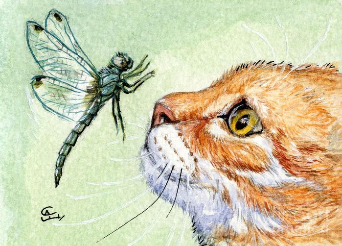 cat-and-dragonfly-svetlana-ledneva-schukina (700x502, 512Kb)