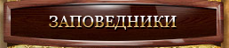 Безымянный (258x55, 29Kb)