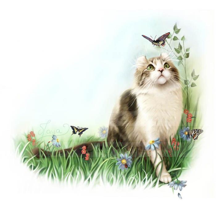 cats_17 (700x691, 248Kb)