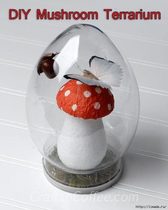 diy-mushroom-terrarium (560x700, 177Kb)