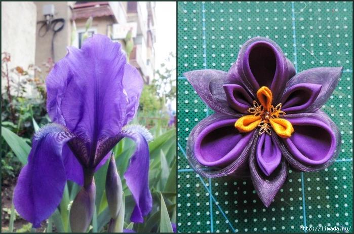 Tutorial-floare-de-iris-matase-organza-34-908x600 (700x462, 293Kb)