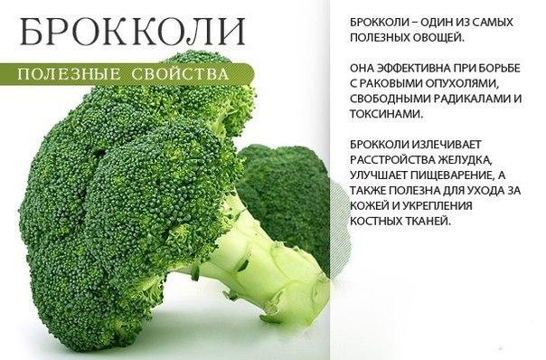 Полезные свойства брокколи (604x398, 71Kb)