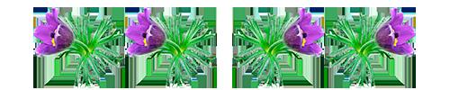1431803052_0_125f58_17b7f851_XL (500x100, 45Kb)