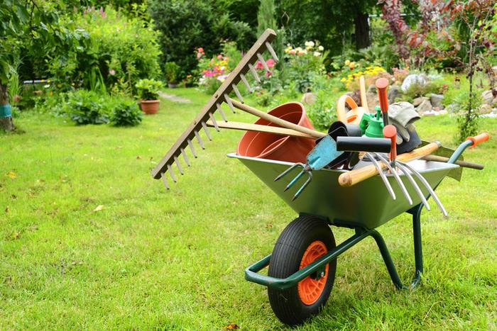 Хитрости опытных огородников и садоводов