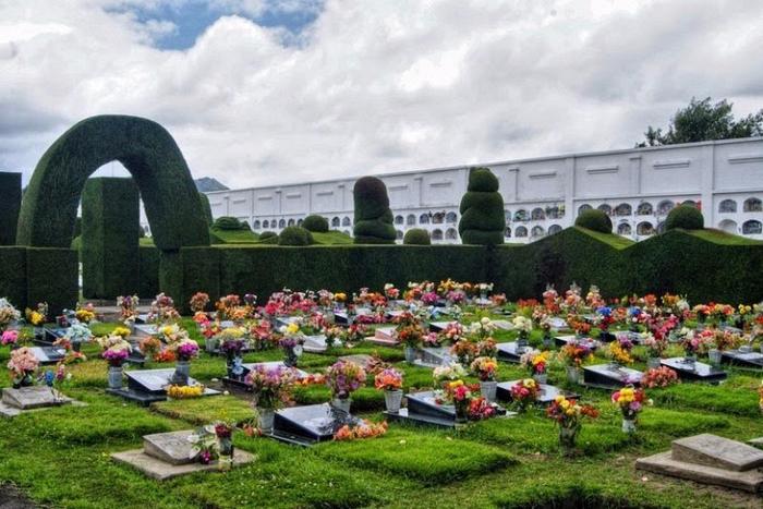садово-парковый дизайн на кладбище тулькан эквадор 5 (700x467, 398Kb)